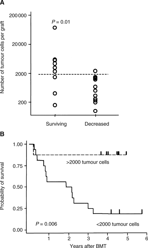 (A) Scatterplot analysis comparing the estimated absolute number of neuroblastoma cells in the autografts of patients who did and did not survive (P=0.01). (B) Comparison of relapse-free survival of patients whose autografts were estimated to contain more than 2000 cells or fewer than 2000 cells (P=0.006).