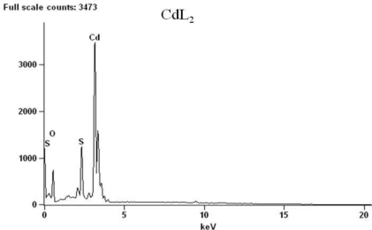 EDX of the decomposed products from complex CdL2 at 800 °C.