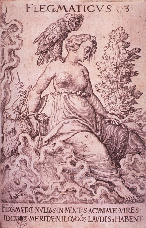 <p>A bare-breasted young woman, with an owl perched on her shouder, is sitting on a ram's back at water's edge, the waves crashing about her. She holds a short staff and a ladle.</p>