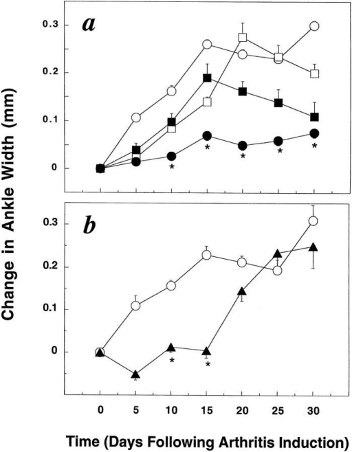 The MCP-1 antagonist prevents the onset of the symptoms  of arthritis. The ankle widths for both hind legs of each animal were measured with a micrometer on the indicated days, and the results are presented as the mean change from the day 0 measurement, ± SEM. *Values  are significantly different from the control MCP-1Ala analogue (P  <0.05). (a) MRL-lpr mice received CFA on day 0 and were injected intraperitoneally daily for 30 d with either MCP-1 antagonist, 2.0 mg/kg,  n = 23, •; MCP-1 antagonist, 0.5 mg/kg, n = 9, ▪; control MCP-1Ala  analogue, 2.0 mg/kg, n = 10, □; or no further treatment, n = 20, ○. (b)  Mice were either injected intravenously daily for 15 d with MCP-1 antagonist, 0.5 mg/kg, n = 6, ▴; or received no further treatment, n = 8,  ○. Results shown are from one of two similar experiments.