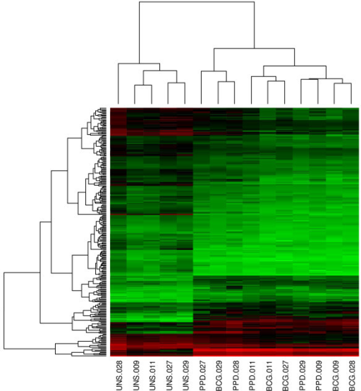 "Heatmap of gene expression profiles with a >2 fold change in expression in response to BCG stimulation, compared with the unstimulated control. Genes were ordered according to their cluster determined by the k-means algorithm. Values increase from green to red, via black. The incubation conditions and the participant identifiers are given below the heatmap, e.g., ""UNS.028"" refers to PBMC incubated without any specific antigens (unstimulated) in participant 28."