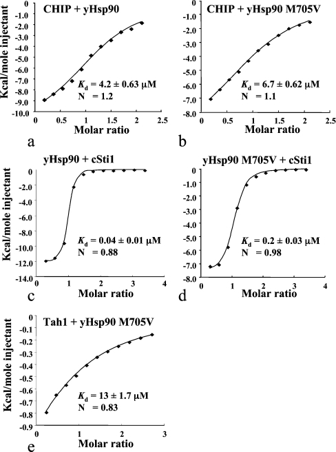 ITC of TPR-domain-containing proteins and the Hsp90 M705V mutationITC by injecting CHIP into (a) yeast Hsp90 (yHsp90) or (b) M705V mutant, or by injecting (c) yeast Hsp90 or (d) M705V mutant into cSti1, or by injecting (e) Tah1 into the M705V mutant. The results show that the M705V mutation of Hsp90 does not affect the binding of CHIP, but, in contrast, the binding of the cSti1 and Tah1 is significantly weaker.