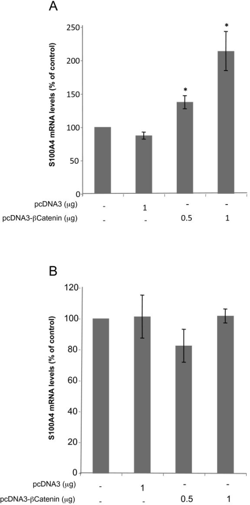 Effects of transfecting an expression vector encoding for β-Catenin on S100A4 mRNA levels. Transfection with β-Catenin expression vector (pcDNA3-β-Catenin) was performed in HT29 cells, both sensitive (Figure 4A) and resistant (Figure 4B) as described in Methods. S100A4 mRNA levels were determined by RT-Real-Time PCR 48 h after transfection. All results are expressed as percentages referred to untreated cells. Values are the mean of three independent experiments ± SE. * p < 0.05.