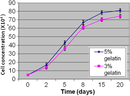 This figure shows the growth kinetics of Y79 cells co-cultured with microparticles formulated with different concentrations of gelatin (3% and 5% gelatin). The graph shows increased cell concentrations on 15th and 20th. Day of Y79 cell culture on microparticles coated with 5% gelatin (p<0.01) when compared to that of 3% gelatin coated microparticles 0.01).