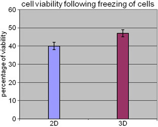 This figure shows the comparison of post freeze and thaw viability of Y79 cells between Y79 cell culture without microparticles (2-D) and Y79 cells co-cultured with microparticles (3-D). The bar diagram shows the viability of Y79 cultured cells with (3-D) and without (2-D) microparticles retrieved from freezing. The Y79 cells viability was slightly higher in 3-D model compared to that in 2-D monolayer (41% versus 35%). Error bars represent standard deviation obtained from triplicates.