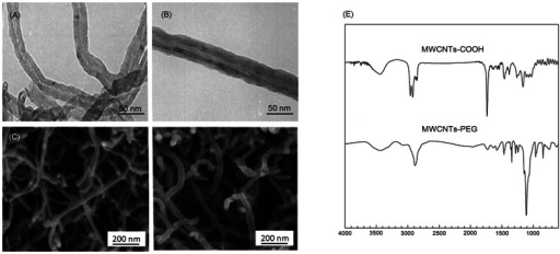 Representative TEM and SEM images of (A, C) MWCNTs-COOH and (B, D) MWCNTs-PEG.(E) FT-IR spectra of MWCNTs-COOH and MWCNTs-PEG.