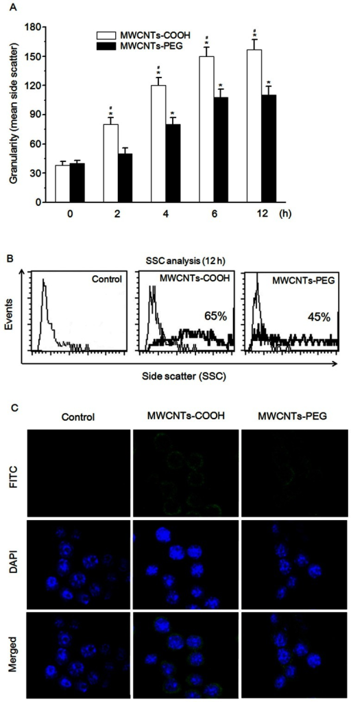 Cellular uptake and distribution of MWCNTs-COOH and MWCNTs-PEG.(A) Quantitative analysis of cellular uptake of MWCNTs-COOH and MWCNTs-PEG by RAW 264.7 cells as shown by flow cytometry using the light SSC parameter. Cells were treated with or without f-MWCNT samples for the indicated time and assayed for SSC intensity by flow cytometry. Data are representative of three independent experiments and are expressed as the mean ± SD of at least three experiments. *p<0.05 compared to control sample, #p<0.05 compared to MWCNTs-PEG. (B) Intracellular distribution of MWCNTs-COOH and MWCNTs-PEG in RAW 264.7 cells viewed under a fluorescence microscope. Cells were incubated with or without FITC-labeled f-MWCNTs samples for 12 h, and then processed for CLSM examination.