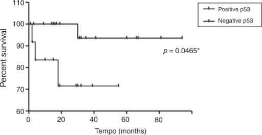 Event-free survival curve of patients with low risk myelodysplastic syndrome and positive or negative for p53.