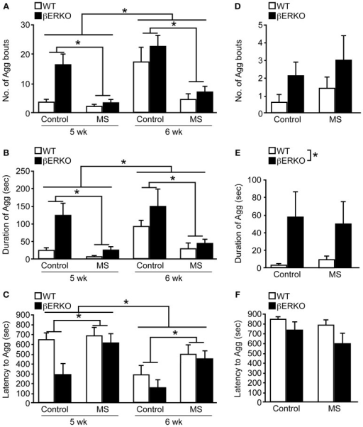 MS effects on peri-pubertal and adult male aggression. (A–C) Peri-pubertal and (D–F) adult WT and βERKO male mice. (A,D) Number of aggressive bouts, (B,E) cumulative duration of aggression, and (C,F) latency to the first aggressive bout. All data are presented as mean ± s.e.m. *p < 0.05.