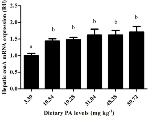 Relative mRNA expression of coaA gene in liver of juvenile blunt snout bream affected by dietary PA levels.