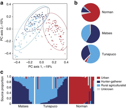 Comparison of the gut microbiomes of Matses, Tunapuco and Norman populations to published data from hunter-gatherer, rural agriculturalist and urban-industrial communities.Analyses were performed on genus-level taxa tables rarefied to 4,000 reads per sample. (a) Principal coordinate analysis of Bray–Curtis distances generated from taxa tables summarized at the genus level. Proportion of variance explained by each principal coordinate axis is denoted in the corresponding axis label. Populations are colour coded by subsistence strategy. Data sets are represented by triangles (this study), circles (Yatsunenko et al.3), and squares (Schnorr et al.1). Ellipses correspond to 95% confidence boundaries for each of the three subsistence categories. (b) Results from Bayesian source-tracking analysis. Source contributions are averaged across samples within the population. (c) Results from Bayesian source tracking for individual samples.