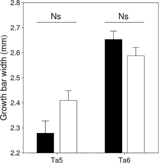 Variation in GBW of Ta5 and Ta6 in male (black) and female (white) barn swallows originating from the Romanian population (mean + SE).Significance level for the difference between sexes for each feather type is shown above bars.
