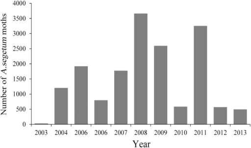Annual catches of A. segetum in the searchlight trap on BH from 2003 to 2013.