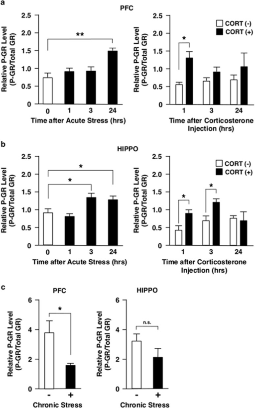 Acute stress, corticosterone injection and chronic stress differentially regulate phosphorylation of GR at serine 220 in mouse PFC and HIPPO. Mice were either immobilized in a 50 ml Falcon tube for 1 h (acute stress), injected with corticosterone (CORT, 20 mg kg−1) intraperitoneally (a and b) or treated with chronic unpredictable stress for 28 days (c) and their PFC and HIPPO were obtained at the time points indicated. The GR phosphorylated at serine 220 (P-GR) was examined with western blots using a specific antibody for this phosphorylated GR and relative P-GR levels were calculated by correcting band density of P-GR with that of total GR. Bars represent mean±s.e. values of relative P-GR levels. *P<0.05; **P<0.01; n.s., not significant, compared with the conditions indicated. GR, glucocorticoid receptor; HIPPO, hippocampus; PFC, prefrontal cortex.