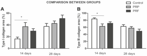 Comparison between type I and III collagen areas in different groups at 14 and 28 days. * p <0.05 (n=8).