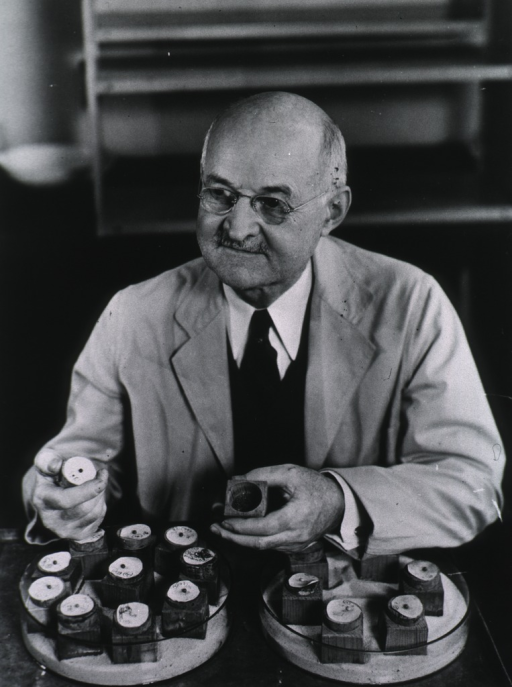 <p>Full face, seated at table with two trays of specimen containers, holding open specimen container in left hand.</p>