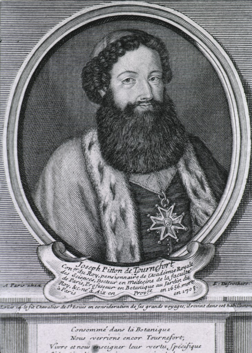 <p>Half length, front.  Wearing ermine trimmed robe and long beard.</p>