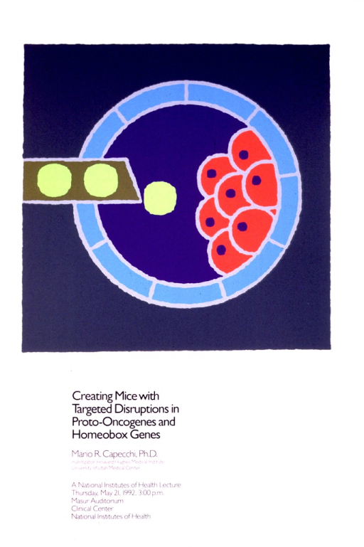 <p>The top portion of the poster consists of a gray square with a model representing a cell or genome.  There is a turquoise ring, and an inner dark blue circle with orange circles with dark blue dots in the center.  Fluorescent green dots are being added to the dark blue inner circle, coming from a thick brown strip.  The bottom portion of the poster lists Mario Capecchi's affiliation as an investigator with the Howard Hughes Medical Institute, University of Utah Medical Center.  It also gives the date, time, and location of the lecture.</p>