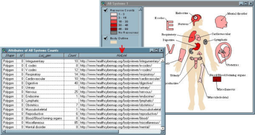 The HotLink field in a BodyViewer table in ArcView Screenshot showing the HotLink field that has been added to the underlying table of a BodyViewer view in ArcView.