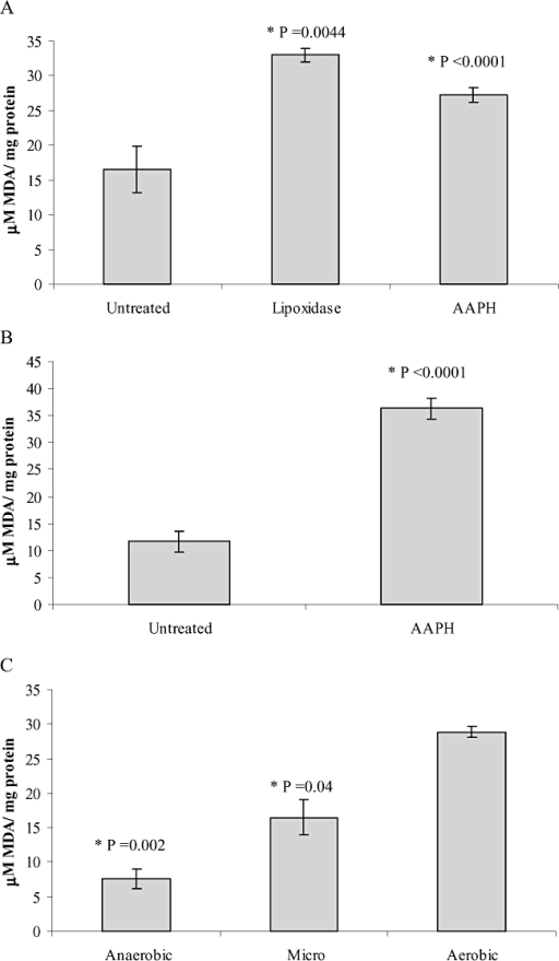 The amount of the lipid peroxide intermediate MDA increases with increasing concentrations of O2 and with exposure to oxidants.A. B. burgdorferi strain B31A3 was grown under microaerobic conditions, the culture split and treated with either 5 mM AAPH or 250 mg of lipoxidase for 4 h at 34°C. To measure the amount of MDA, the cells were derivatized with thiobarbituric acid and analysed by HPLC. MDA standards were prepared in methanol for comparison. The calculated P-values indicated that the two treated samples were significantly different from the untreated sample.B. Mouse myeloma SP2/O cells were cultured with HYQ-CCM1 (HyClone) medium at 37°C in a humidified 5% CO2 atmosphere, treated with 1 mM AAPH at 37°C for 4 h (Chotimarkorn et al., 2005) and MDA measured as above. The calculated P-value indicated that the treated sample was significantly different from the untreated sample.C. B. burgdorferi strain B31A3 was grown aerobically, microaerobically and anaerobically to a cell density of 5 × 107 cells ml−1 and MDA measured as above. The calculated P-values indicated that both the anaerobic and microaerobic samples were significantly different from the aerobic sample.
