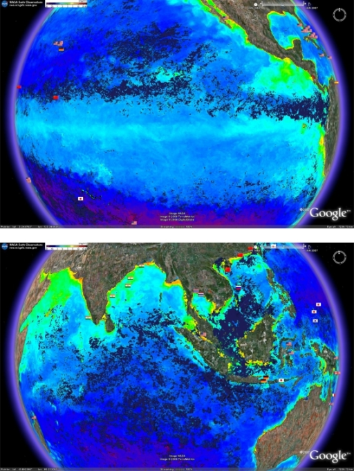 Proximity to areas of high productivity as measured by surface chlorophyll concentrations using composite date from the AQUA and MODIS satellites and for the time period of December 1 2007 to January 1 2008. Data can be downloaded from the NASA Earth Observatory (http://neo.sci.gsfc.nasa.gov/Search.html). Increased yellow intensity indicates increased chlorophyll concentration.