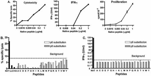 Cytotoxicity and IFN-γ production assays using native peptide and APL with substitutions at p6 and p8. (A) 51Cr-release cytotoxicity assay was performed using increasing concentrations of native Ins B15–23 peptide with P815 target cells and G9C8 cloned T cells as effectors at an E:T ratio of 10:1 following 4 h of incubation. IFN-γ production was measured by ELISA following incubation with P815 cells and increasing concentrations of B15–23 peptide after 24 h incubation. Proliferation is shown by [3H]thymidine incorporation in cpm following incubation of G9C8 cloned T cells, in triplicate, with increasing concentrations of Ins B15–23 peptide. (B) P815 target cells were first incubated with 51Cr-sodium chromate and secondly with different concentrations of native peptide (NAT), irrelevant control peptides (LLO and HA) and peptides altered at position 6 and position 8. The G9C8 cloned T cells as effectors were added to the plates at an E:T ratio of 10:1. Data are shown for a peptide concentration of 1 μg/mL. The background when effectors and targets were incubated in the absence of peptide was 8.6% in this assay. The data are presented as percentage of specific lysis. Each value corresponds to the average of duplicate samples. Results shown represent one of at least two independent assays. (C) G9C8 cloned T cells were stimulated by peptide-pulsed P815 cells at five peptide concentrations within the range 0.008–5 μg/mL. IFN-γ production at 1 μg/mL is shown. Supernatants were tested in duplicate taken after 24-h incubation at 37°C. Results correspond to one of two independent experiments. The limit of detection for the assay was 0.27 U/mL.