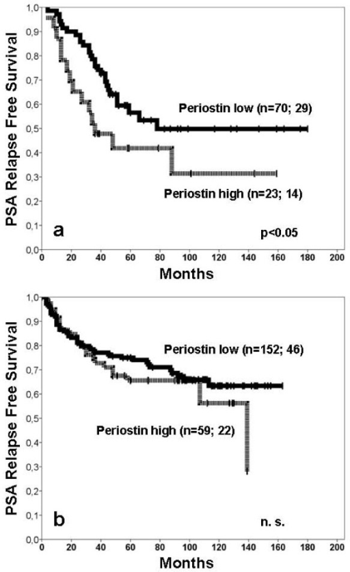 PSA relapse free survival for periostin in training and test cohort. a) In the training cohort higher stromal periostin expression was a significant prognosticator for shortened PSA relapse free survival (p = 0.045). The periostin low group consisted of 70 patients of which 29 had a PSA relapse. In the periostin high group 14 of the 23 patients had a PSA relapse. b) In the test cohort the curve of those patients with higher stromal periostin expression remained slightly below that of the patients with lower stromal periostin expression (p = 0.373). In the test cohort the periostin low group consisted of 152 patients. Forty-six patients had a PSA relapse (periostin high group: 22 of the 59 patients with PSA relapse).