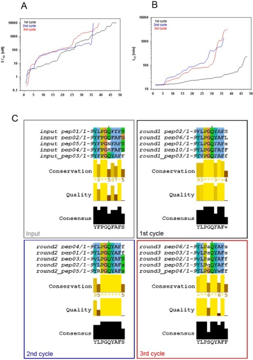 As peptide sequences evolve, metabolic stability of the peptides improves while their biological activity is retained. Upper panel (A+B):depiction of EC50 values of the receptor activating potency (A) and of the metabolic stability (B,  = t1/2) for the three GNN-based optimization rounds. Both graphs show all the peptides from a given round, sorted according to their activity in the parameter on the y axis. With receptor activity, low EC50 values are favorable, while in the stability parameter t1/2, high values are to be achieved. Lower panel (C): Peptide sequence comparisons by multiple alignments illustrate the evolution over the different steps of the process. Four sets of alignments represent the start population ( = input) and three optimization rounds.