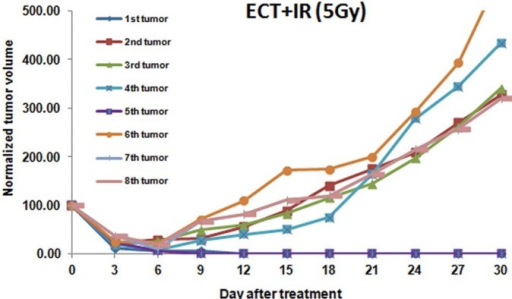 Individual tumor growth curves of tumors treated by the combination of electrochemotherapy (ECT) and radiotherapy at the dose of 5 Gy.