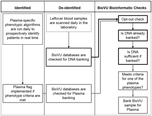 Schema of BioVU plasma bioinformatics processes and procedures. BioVU plasma collection requires the integration of three main data infrastructures. Daily plasma phenotypes are run against an identified database to identify eligible subjects who meet pre-defined clinical criteria. This information is then incorporated into the de-identified database, and only those subjects who already have a DNA sample banked are flagged for plasma collection.