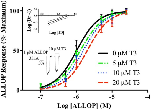 "Inhibition of ALLOP response by T3.Dose-response curves for the effects of ALLOP were constructed separately in the presence of 0, 5, 10, or 20 μM T3. The data are represented as means ± S.E.M. for triplicate determinations. For each data point, n = 3–5. (Top Inset) Schild plot of the data from Fig 4. ""Dr"" stands for dose-ratio. The slope of the line was 1.2 ± 0.1, which was not significantly different from unity according to 95% confidence levels (shown in dotted line). (Bottom Inset) Representative tracings for the effect of 10 μM ALLOP with or without added 10 μM T3. The solid lines above the tracing indicate the time of superfusion of the oocyte with the indicated solutions."