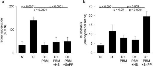 Intervention with PBM mitigated diabetes-induced (a) generation of superoxide by retina and (b) leukostasis in the retinal vasculature.Some diabetic mice treated with PBM had their head shielded from the light by a lead shield (PBM + HS) or were concurrently treated with the HO-1 mitigator, SnPP (PBM + SnPP). Total duration of diabetes was 14 weeks, but PBM and HS or SnPP were applied only for the last 10 weeks of that interval. N, nondiabetic; D, diabetic; D+PBM, diabetics receiving PBM therapy. Horizontal lines above the figure indicate significant differences; no line indicates lack of statistical significance. n = 4–6 per group.