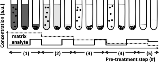 Schematic of the DPE sample pre-treatment process (black spots: SAX micro-particles). This figure is based on quantitative analyte-recoveries