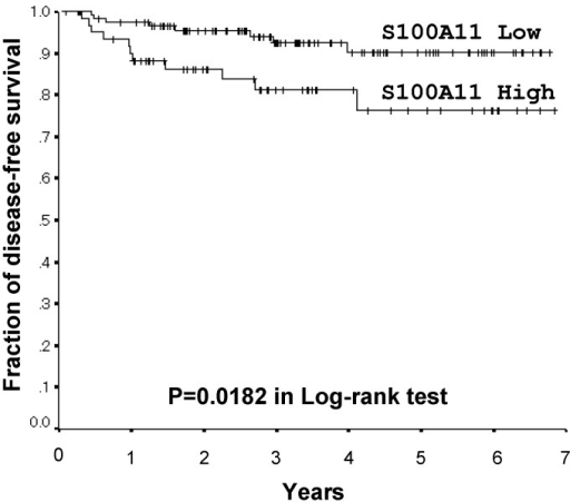 Kaplan-Meier Disease-free survival curves by S100A11 expression levels for stage I lung adenocarcinomas.Five-year disease-free survival rates were 76.3% in high-S100A11 expressers (n = 61) and 90.1% in low-S100A11 expressers (n = 118). The strong expression of S100A11 correlated with shorter disease-free survival in post-operative lung adenocarcinomas (p = 0.0182 in the Log-rank test).