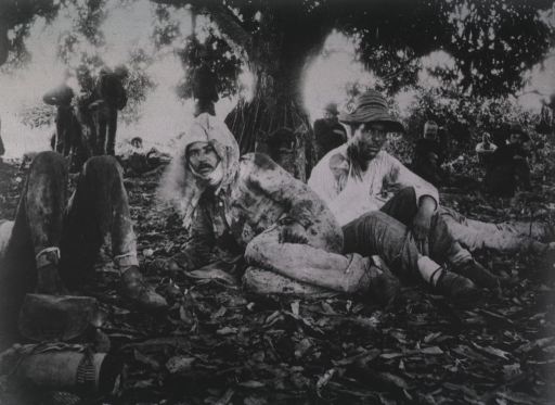 <p>Three badly wounded prisoners sit under a mango tree while soldiers observe them.</p>