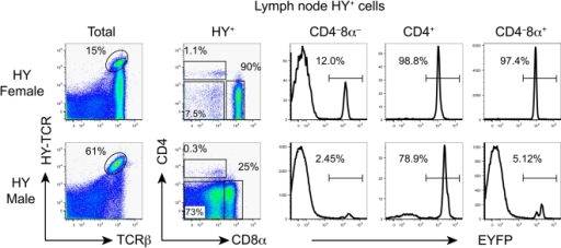 Fate mapping of lymph node T cells with the transgenic HY-TCR using RORγt-cre.CD4 and CD8α expression by gated HY (T3.70)+ lymph node cells (left column) is shown in the second column. EYFP expression by HY+CD4−CD8α−, HY+CD4+CD8α− and HY+CD4−CD8α+ T cells is shown.