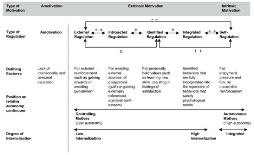 Model Describing Internalization and Human Motivation. Model shows different types of motivation and regulation continuum reflecting varying degrees of internalization and self-determination. This continuum reflects a simplex-ordered structure, evident when the correlation between scales measuring adjacent types of motivation such as external regulation and introjected regulation is higher than the correlation between dimensions that lie further apart such as external regulation and identified regulation. Adapted from [68].