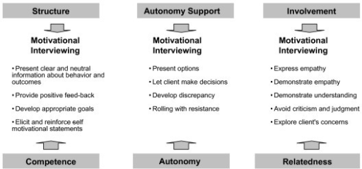 exercise psychology and self determination theory Using self-determination theory as a guiding framework, this study analyzed the  impact of the sport education model in self-determination and motivation,  psychological basic need  journal of sport & exercise psychology.