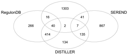 Venn Diagram showing the number of overlapping interactions between the networks of RegulonDB, CLR, SEREND and DISTILLER. CLR, SEREND and DISTILLER were applied to our data sets. As the overlap between SEREND and RegulonDB is algorithmically defined to be 100%, we show only the predictions of SEREND that were not reported in RegulonDB and do not explicitly visualize the overlap with RegulonDB for SEREND.