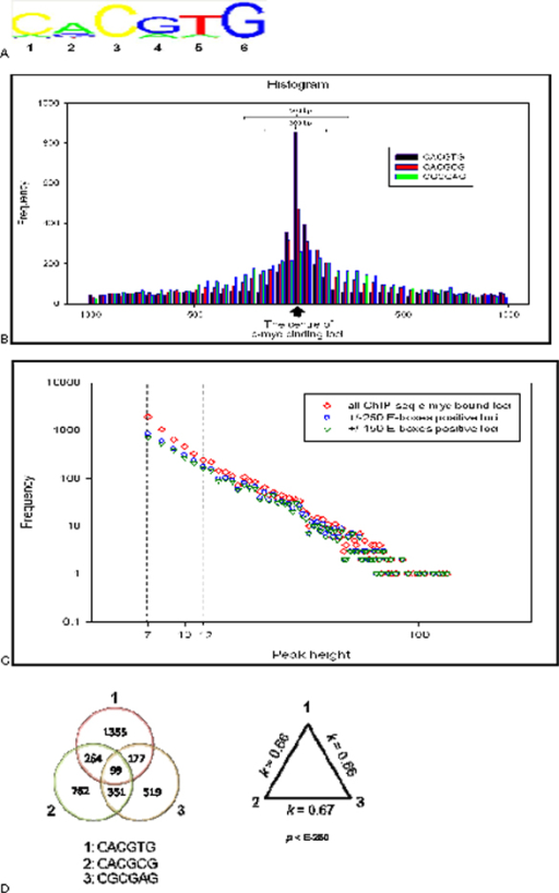 Validation of ChIP-seq defined c-Myc binding loci based on motif finding analysis. A: PWM of c-Myc TFBSs defined with NestedMICA program trained with 12 peak height or higher value defined in ChIP-seq experiment. B: Distribution of E-box sequences in ± 1 kb from the centre of ChIP-seq defined binding loci. C: Frequency distribution of the number of ChIP-seq overlapped DNA fragments (peak height). ◊: All ChIP-seq c-Myc bound loci for observed peak heights. o: E-boxes positive loci found in vicinity ± 250 bp. ∇: E-boxes positive loci found in vicinity ± 150 bp. D: Venn diagram of co-occurrence of E-boxes in ± 150 bp of c-Myc binding loci (left side). Pair of Kappa correlation coefficient of co-occurrence of E-boxes in c-Myc binding loci (right side).