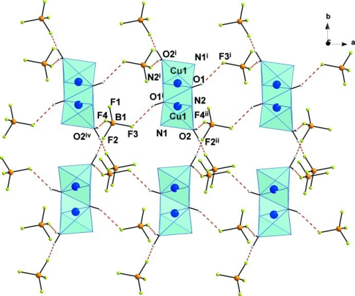 Hydrogen bonding network in the title compound. Only the major components of the tetrafluridoborate anions are shown. Hydrogen bonds are depicted by dashed lines. Symmetry codes: (i) 2-x, 1-y, -z; (ii) 1+x, y, z.