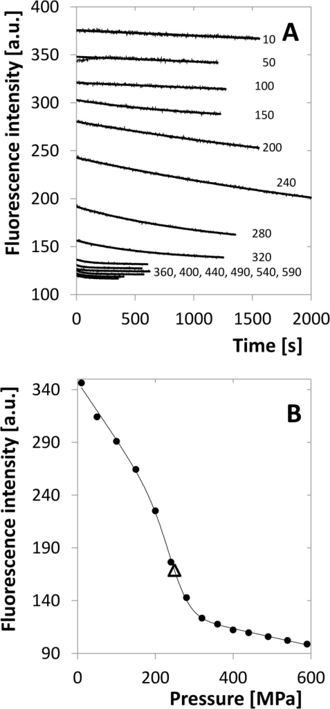 Fluorescence-intensity indicated transition for 5 μM dimer.A. Time dependence of the intensity for different pressures. Each series is plotted together with the fitting single-exponential decay curve. The same sample was used for the whole set of measurements, pressure setting was facilitated by pressure jumps. The numbers indicate pressure in MPa. B. Equilibrium values of fluorescence for the same experimental series determined from the limit of the fitting curves for time tending to infinity. Inflex point is indicated by the open triangle.