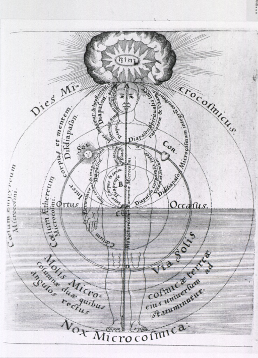 <p>Alchemical chart showing the human body as the world soul.</p>