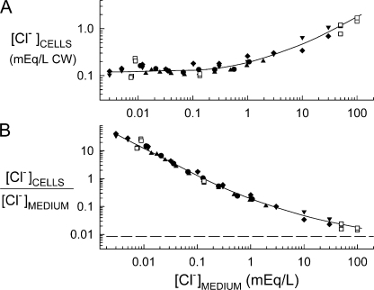 Cl− contents (A) and distribution ratios (B) for S. cerevisiae grown in media containing varying concentrations of Cl−. Solid symbols: cells were washed and suspended at A600 of 0.05 in media in which all but ∼5 μM Cl− had been replaced by SO4=, and Cl− was added back as Na36Cl (0.001–0.3 mM), plus, for higher concentrations, 0.7–100 mM NH4Cl, KCl, or NaCl. Suspensions were incubated aerobically 16–20 h at 30°C, and the cellular 36Cl− contents were determined as described in Materials and methods. Unless otherwise indicated the final extracellular pH was 3.5 ± 0.5. Open symbols: cells were grown in APG, washed, and incubated 2 h at 30°C in APG containing various concentrations of 36Cl− before determining cellular 36Cl− contents. The dashed line in B is the distribution ratio predicted from a Nernst distribution, with plasma membrane potential of −120 mV. The solid curves through the data have no theoretical significance. ♦: strain BY4741, YNB, 25 mM K-citrate buffer, final pH 4.4. ▾, ▴: strain BY4741, YNB. •: strain FKY282, YNB. □: SUL1 deletant (BY4741 background), 2 h, APG.