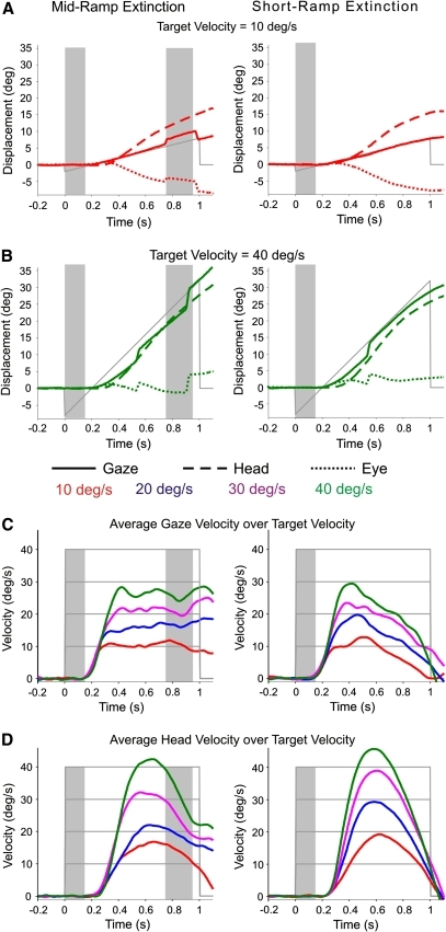 Differences in response to target velocity. Left mid-ramp extinction responses; right short-ramp extinction responses. Examples of raw displacement responses for gaze (filled line), eye (dotted line) and head (dashed line) from subject 4 at a 10 deg/s and b 40 deg/s at PD = 150 ms. Average velocities for c gaze and d head over all subjects for each velocity at PD = 150 ms