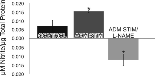 Stimulation with adrenomedullin (ADM) increases nitric oxide (NO) production. In isolated retinas stimulated with ADM (200 nM), there was a statistically significant increase in nitrite (i.e., NO) production. There was a statistically significant decrease in nitrite production when the isolated retinas were stimulated with ADM in the presence of the nNOS inhibitor Nω-Nitro-L-arginine methyl ester (L-NAME). Asterisks denote p<0.001 (two way ANOVA n=6; error bars represent the standard deviation).