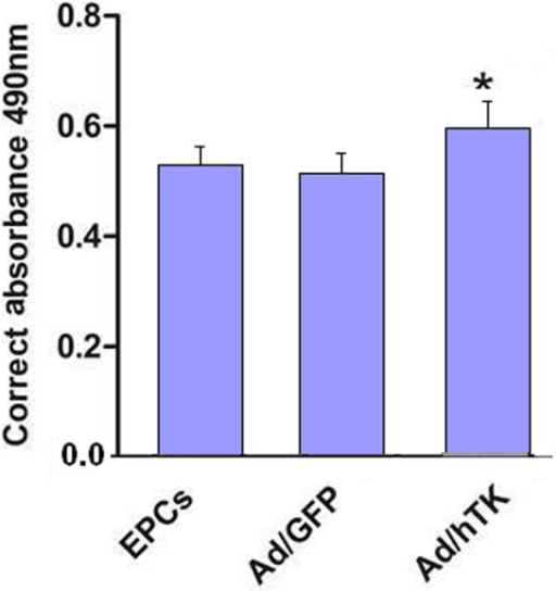 Proliferative activity of Ad/hTK -transduced EPCs.Proliferative activity of Ad/hTK -transduced EPCs was measured by CCK-8 kit after cultured for 48 h. The increased absorbance in mitogenic response of EPCs transduced with Ad/hTK was statistically significant in camparison with EPCs transduced with Ad/GFP -transduced (Ad/GFP) or non-transduced EPCs (*P<0.05 versus Ad/GFP and EPCs).
