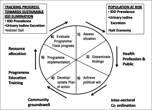 social process model for a national idd control program