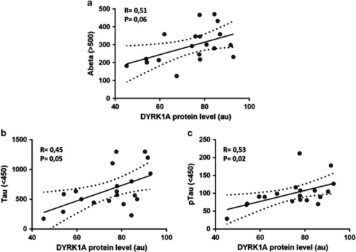 Correlation analysis between level of CSF markers and DYRK1A level. (a) Aβ42 level and DYRK1A level; (b) tau level and DYRK1A level; (c) p-tau level and DYRK1A level. Correlation was assessed with nonparametric Spearman's rank correlation test. Graphs show regression lines with a 95% confidence interval; a.u., arbitrary unit; CSF, cerebrospinal fluid; p-tau, phosphorylated tau.