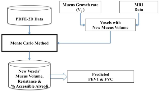 FEV  and FVC values predictions predicted from the lung model.This flowchart illustrates the process of how our lung model predicts the FVC and FEV of a CF patient given the previous mucus content of each voxel along with a mucus growth rate.